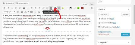 cara membuat read more di wordpress